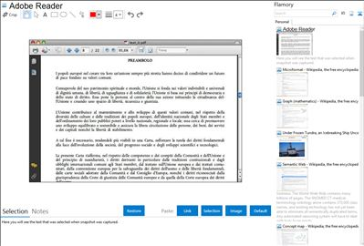 Adobe Reader - Flamory bookmarks and screenshots