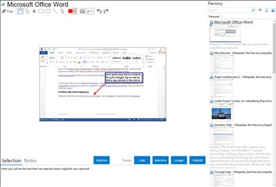 Microsoft Office Word - Flamory bookmarks and screenshots